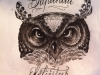 tattoo-drawing-owl